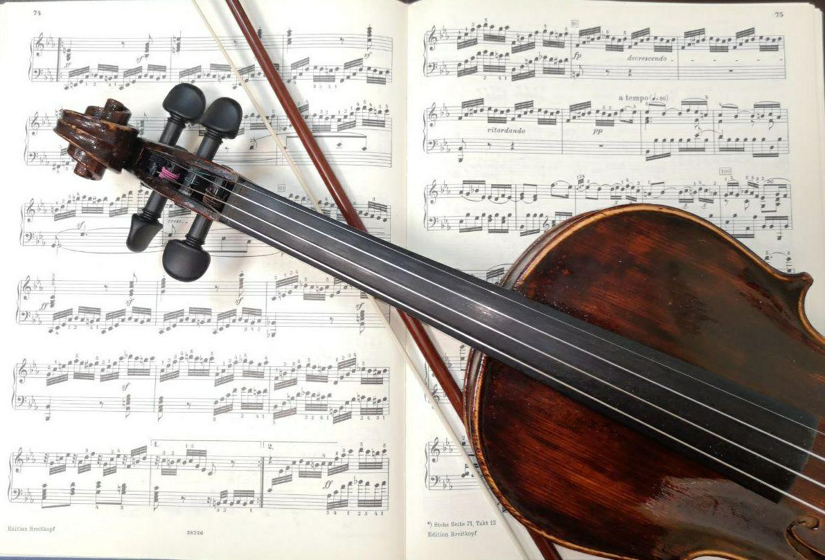 Интенсив Вдохновение скрипкой